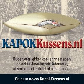 KapokKussen