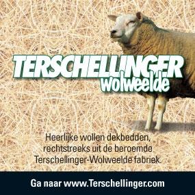 Terschellinger Wolweelde
